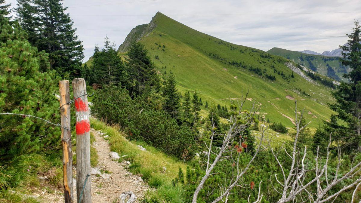 Die Tiroler Hütte am Schafreuter